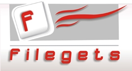 FileGets: Get The Best Files
