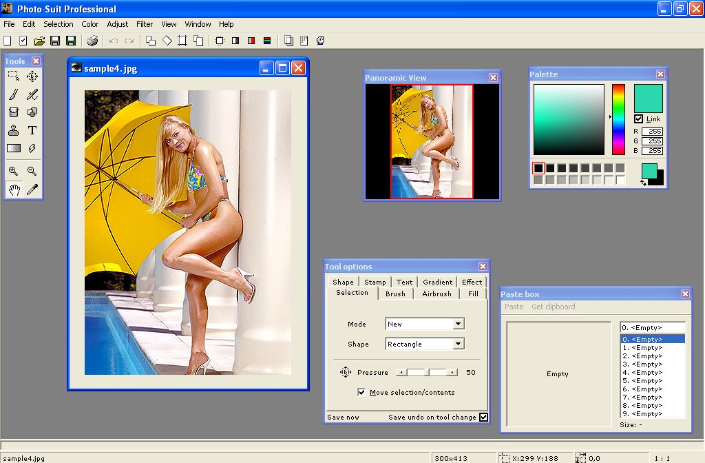 Filegets Photo Suit Professional Screenshot Photo Editing Software That Provides Easy Image