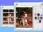 Wall Photo Maker Software Download